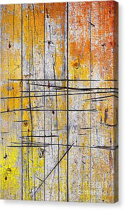 Cracked Wood Background Canvas Print