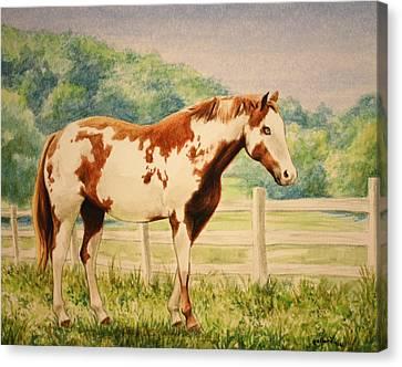 Cracker Canvas Print