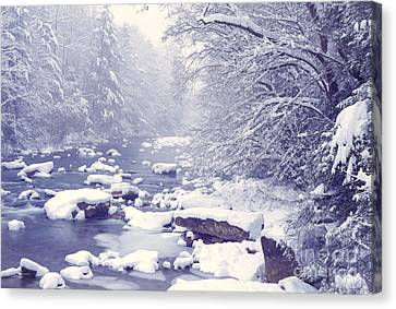 Cranberry River Heavy Snow Canvas Print by Thomas R Fletcher