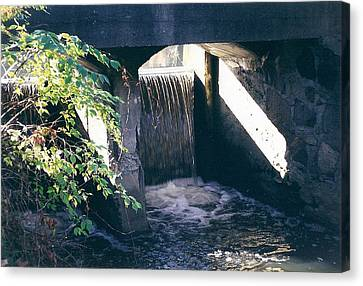 Cranbrook Waterfall Canvas Print by Cynthia Hilliard