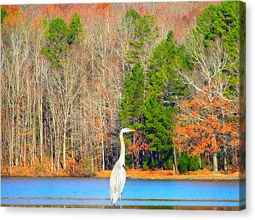 Crane And Color Canvas Print