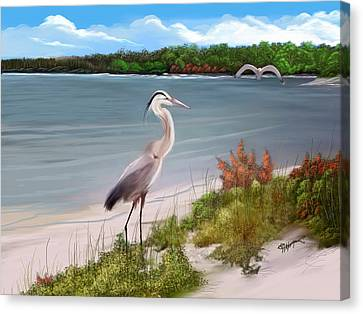 Crane By The Sea Shore Canvas Print by Anthony Fishburne