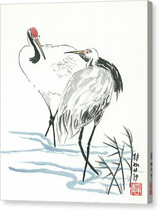 Crane Couple Canvas Print