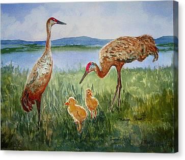 Crane Family Canvas Print