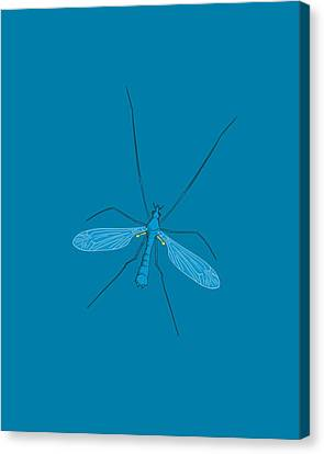 Crane Fly, Artwork Canvas Print by Science Photo Library