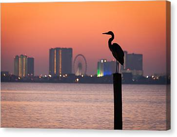 Canvas Print featuring the photograph Crane On A Pier by Tim Stanley