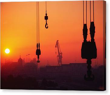 Cranes At Sunset Canvas Print by The Irish Image Collection