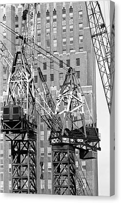 Cranes Ready For Action Canvas Print