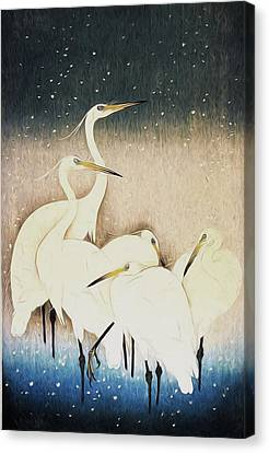 Cranes  Canvas Print by Shanina Conway