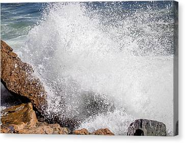 Crashing Wave Acadia  Canvas Print by Trace Kittrell