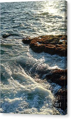 Crashing Waves Canvas Print by Olivier Le Queinec