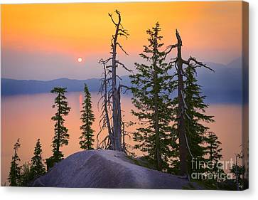 Crater Lake Trees Canvas Print