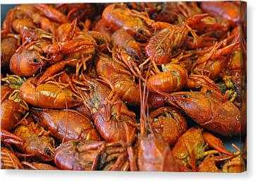 Crawfish Boil Canvas Print by Steve Archbold