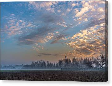 Crawling Mist Canvas Print