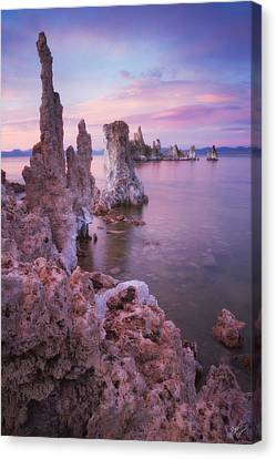 Crayola Funhouse Canvas Print by Peter Coskun