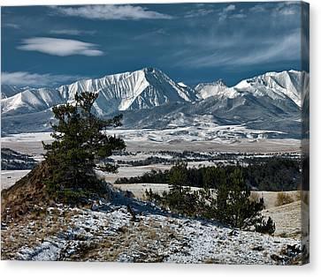 Crazy Mountains Montana Canvas Print by Leland D Howard