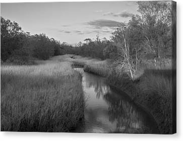 Canvas Print featuring the photograph Creek At Wilmington Island by Frank Bright