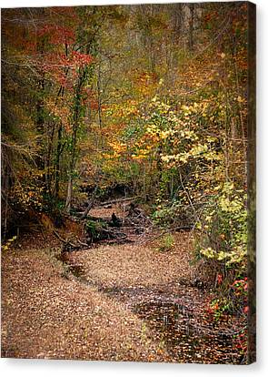Creek Bed In Autumn - Fall Landscape Canvas Print by Jai Johnson