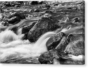 Canvas Print featuring the photograph Creek by Beverly Parks