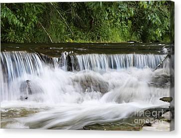 Creek Falls Canvas Print by Suzi Nelson