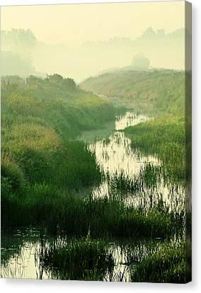 Creek I Canvas Print