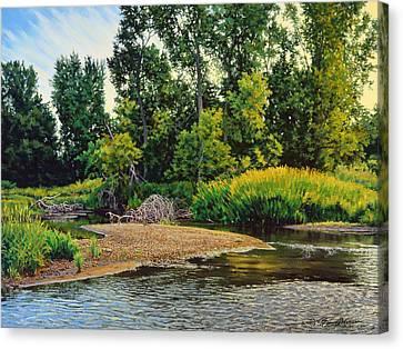 Creek's Bend Canvas Print by Bruce Morrison