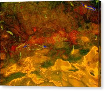 Creekwater Abstract 3 Canvas Print by Deborah  Crew-Johnson