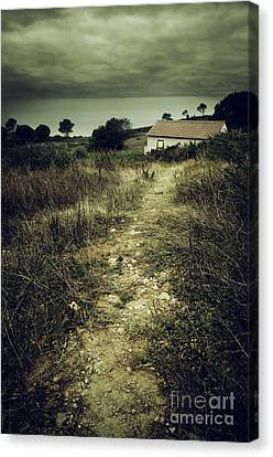 Creepy Trail Canvas Print by Carlos Caetano