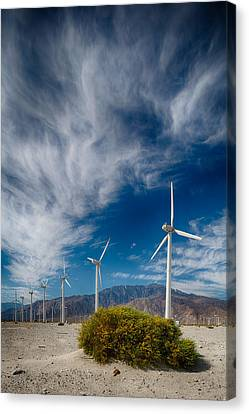 Creosote And Wind Turbines Canvas Print