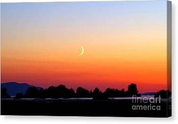 Crescent Moon At Sunset  - Lummi Bay Canvas Print by Douglas Taylor