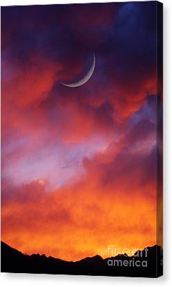 Canvas Print featuring the photograph Crescent Moon In Purple by Joseph J Stevens