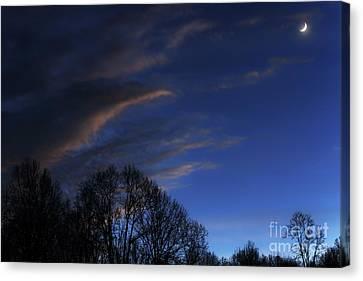 Crescent Moon Landscape Canvas Print by Thomas R Fletcher