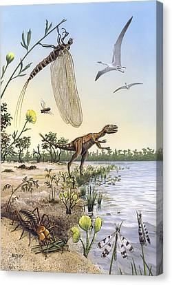 Sea Fern Canvas Print - Cretaceous Of Brazil, Prehistoric Scene by Science Photo Library