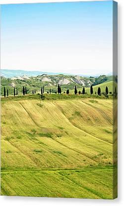Crete Senesi Area, Near Asciano, Siena Canvas Print by Nico Tondini