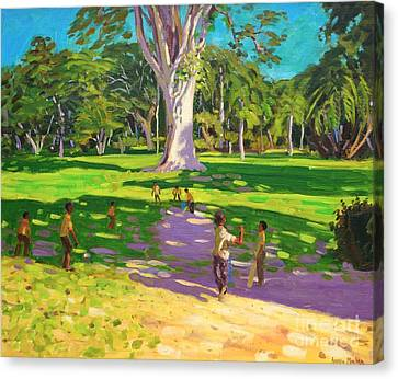 Cricket Match St George Granada Canvas Print by Andrew Macara