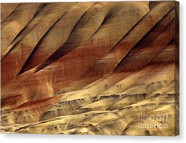 Crimson And Gold Canvas Print by Mike  Dawson