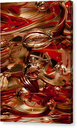 Crimson And Gray Glass Macro Ws2 Canvas Print by David Patterson