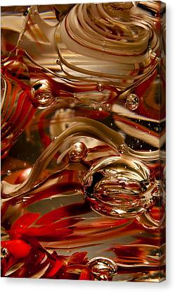 Crimson And Gray Glass Macro Ws4 Canvas Print by David Patterson