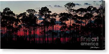 Crimson In The Pines Canvas Print