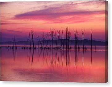 Crimson Morn Canvas Print