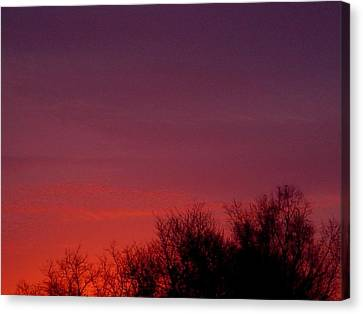 Crimson Sky Canvas Print