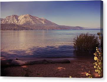 Crisp And Clear Canvas Print by Laurie Search