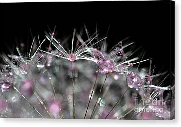 Canvas Print featuring the photograph Cristal Flower by Sylvie Leandre