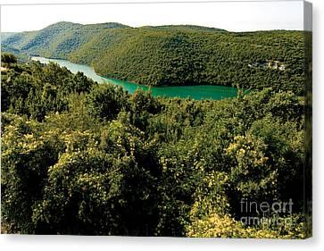 Johann Baptist Hofner Canvas Print - Croatia River by Boon Mee