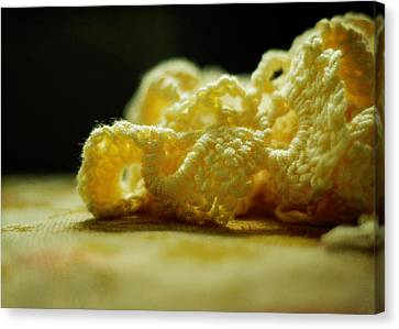Crocheted Sunshine Canvas Print by Rebecca Sherman