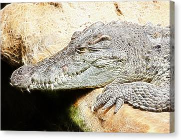 Crocodile Fractal Canvas Print by Pati Photography