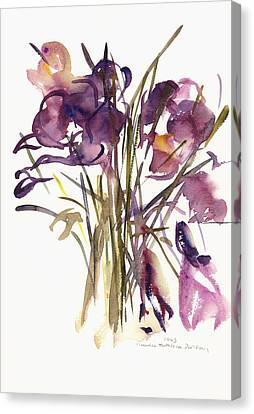 Crocus Canvas Print by Claudia Hutchins-Puechavy