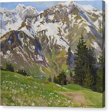 Austria Canvas Print - Crocuses Near The Hochberg Mountain by Victoria Kharchenko