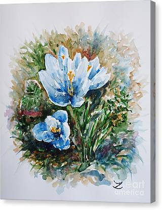 Crocuses Canvas Print by Zaira Dzhaubaeva