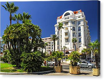 Croisette Promenade In Cannes Canvas Print by Elena Elisseeva